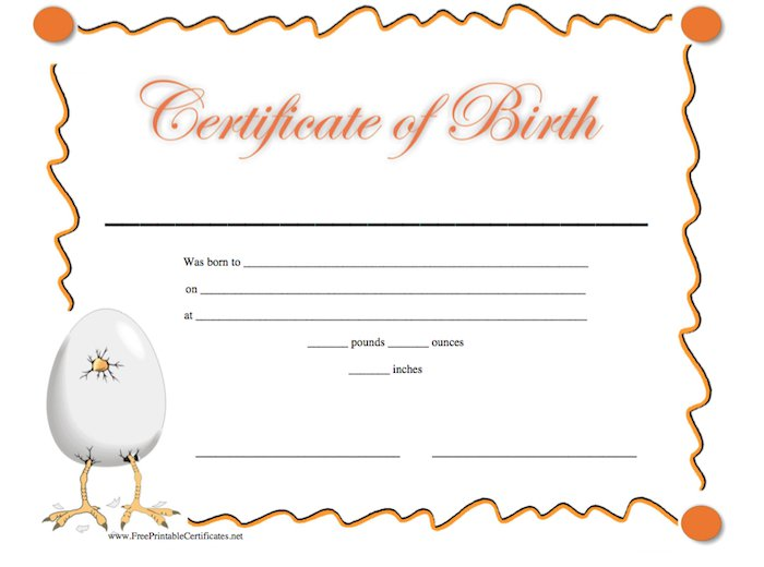 15 birth certificate templates word pdf template lab - Certificates Templates