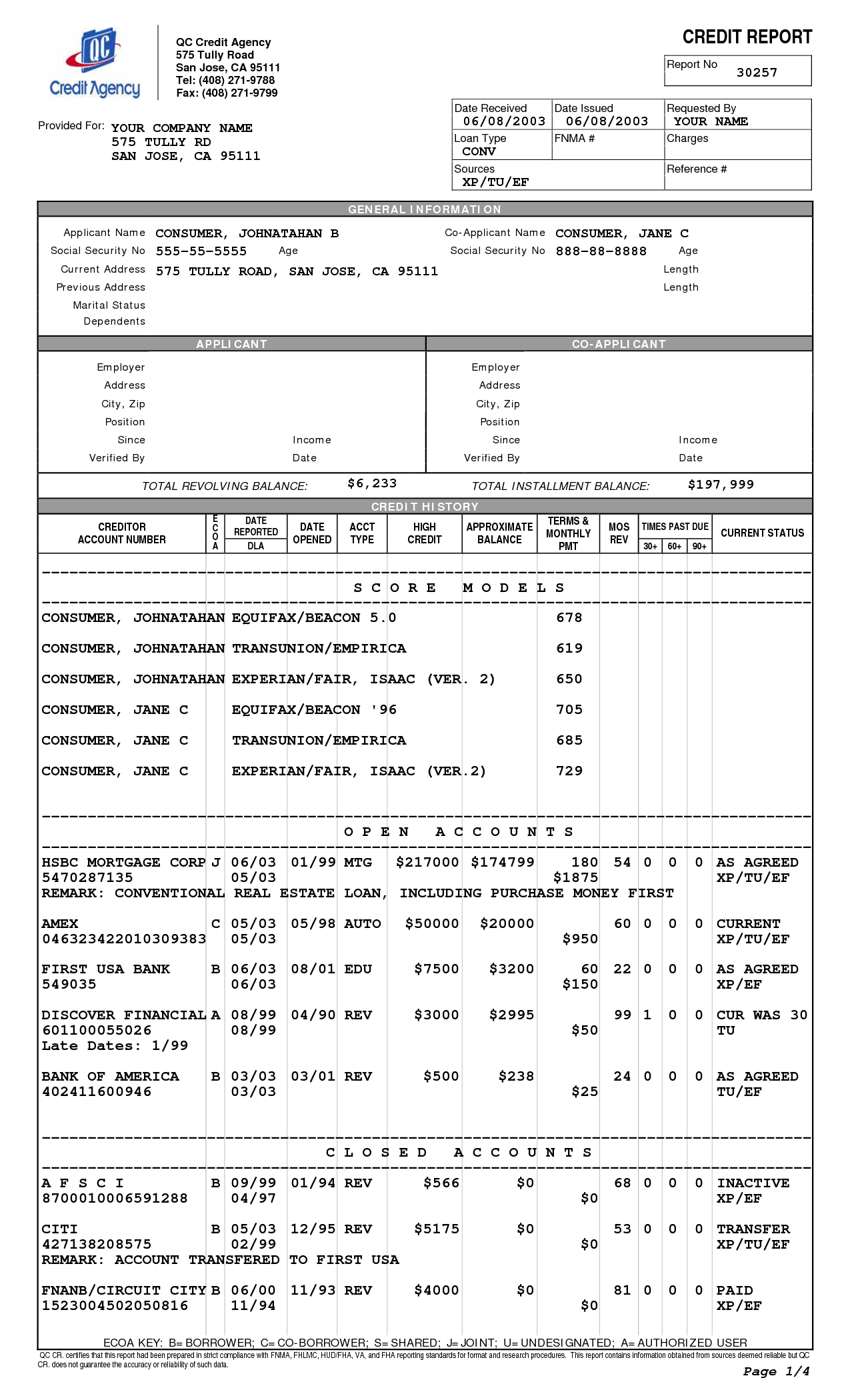 Credit Reports Template | aplg planetariums.org