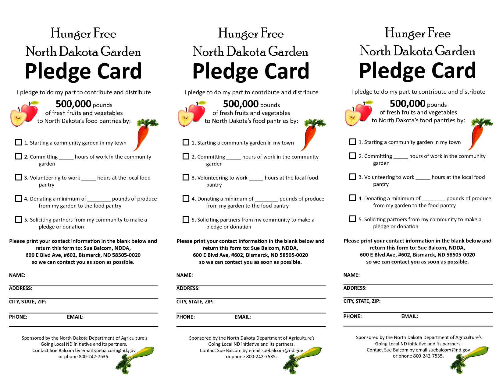 pledge form template word