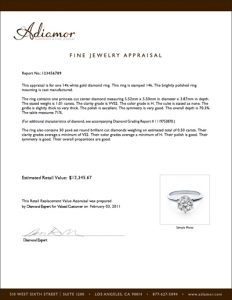 jewelry appraisal form template - jewelry appraisal templates charlotte clergy coalition